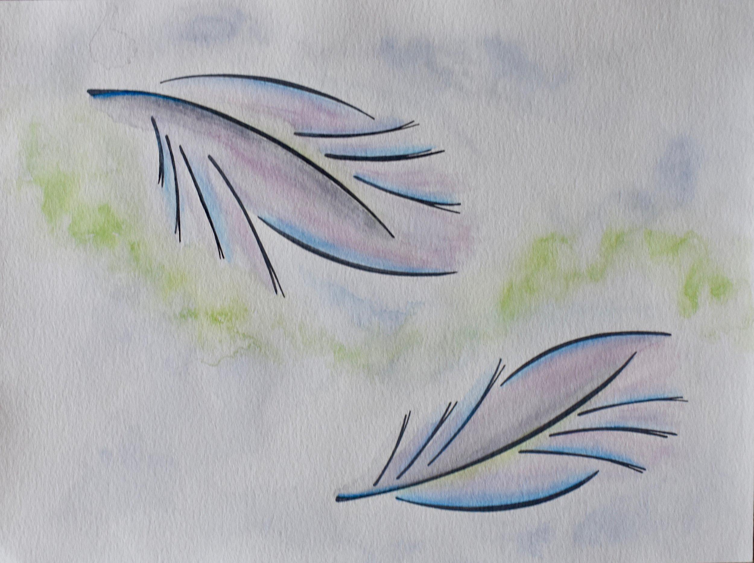 falling feathers.jpg