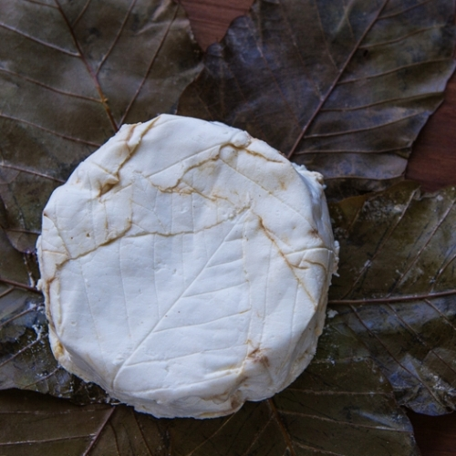 O'Banon Capriole Goat Cheeses
