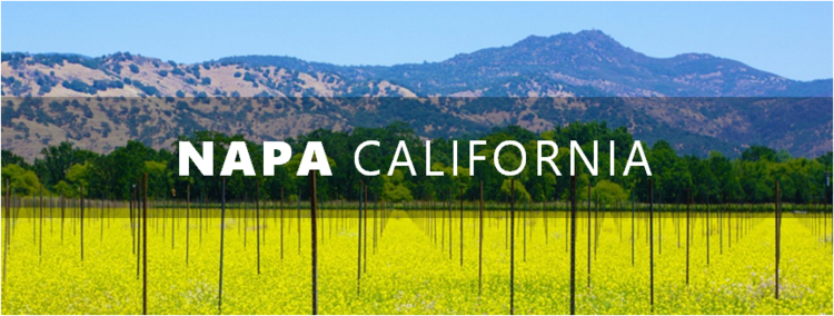 Hospitality Funding Advises Cambria Hotels Expansion in Napa, California.png