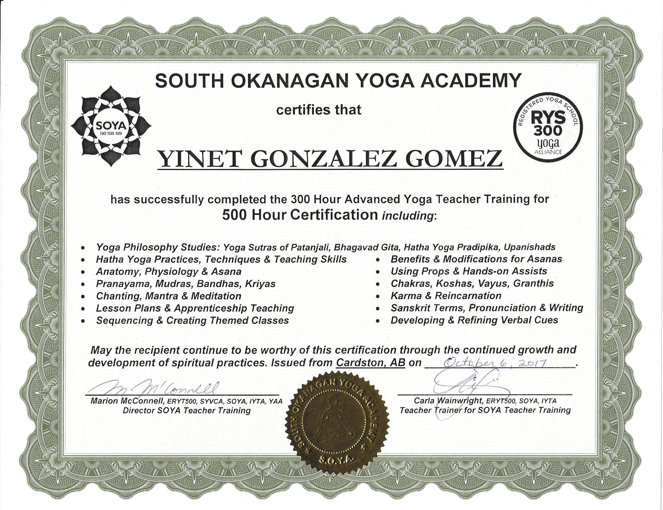 300h certificate.jpg