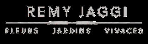 RJ_Logo.Trelex NEGA MINI.png