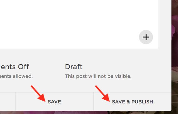Bas de la fenêtre  BLOG , boutons  SAVE  et  SAVE & PUBLISH