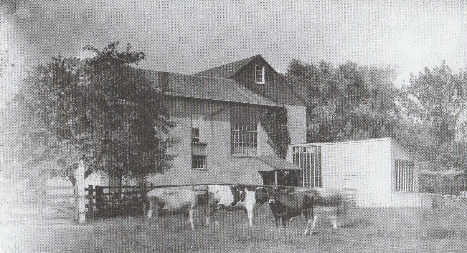 Corson Farm - 3.JPG