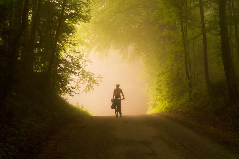 Bicycle In Woods.jpg