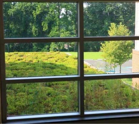 Cheltenham Elementary School - Windows.JPG