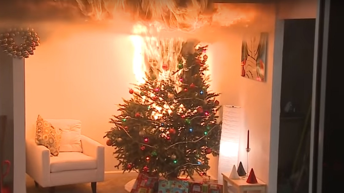 Glenside Local: Fire Safety With Christmas Trees