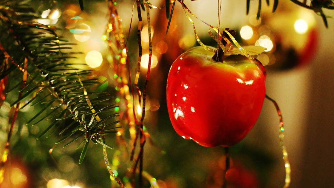 Glenside Local: Christmas Tree Collections In Upper Dublin Township