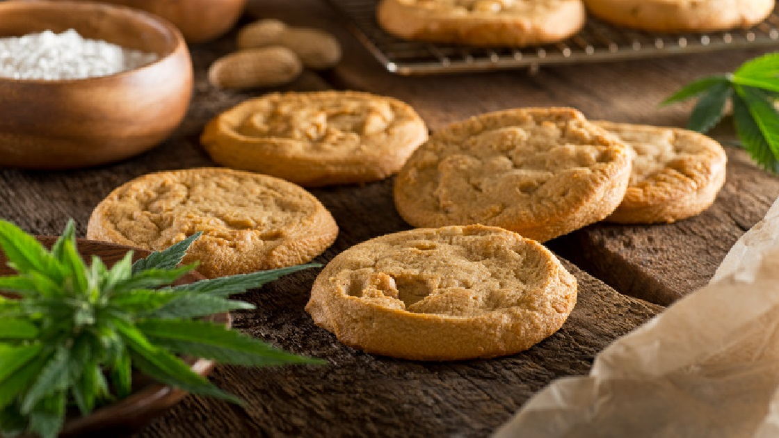 Glenside Local: Baker Pleads No-Contest For  Pot-Laced Cookies Served At  Baby Shower In North Hills