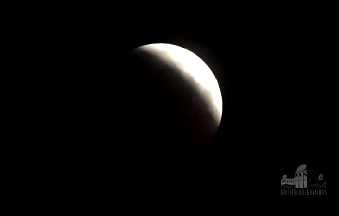 Glenside Local: Super Blood Wolf Moon Live On Sunday Night