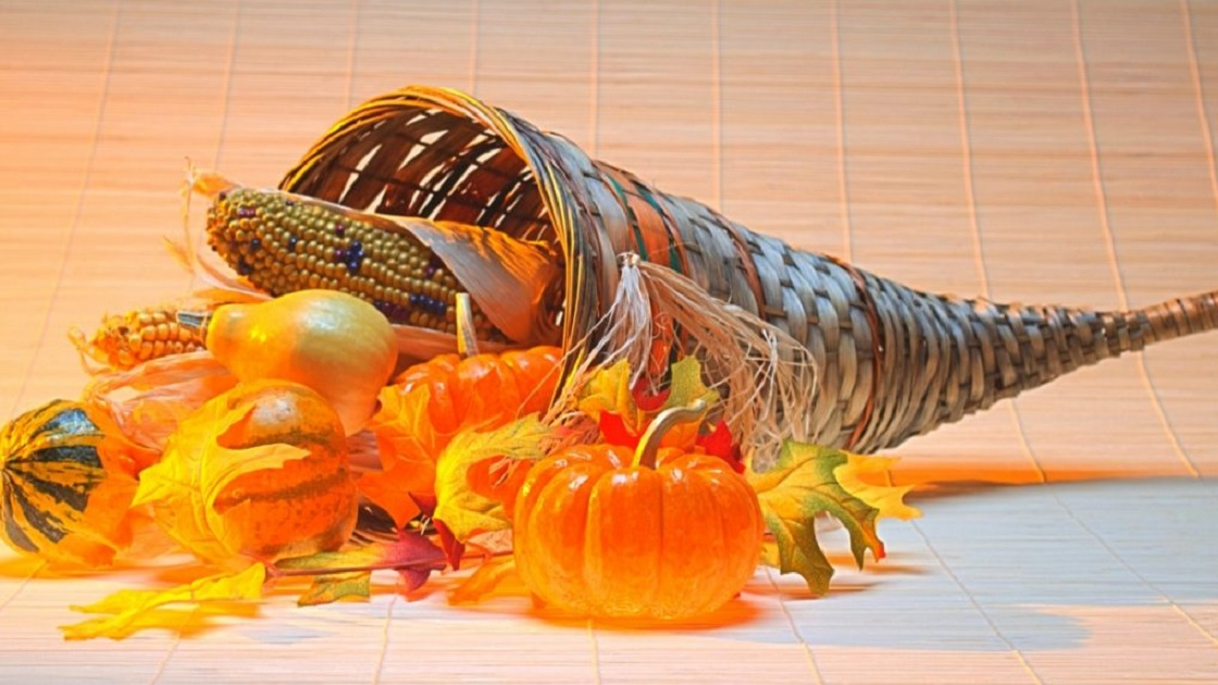 The Freedom Valley Chronicles: The First Thanksgiving