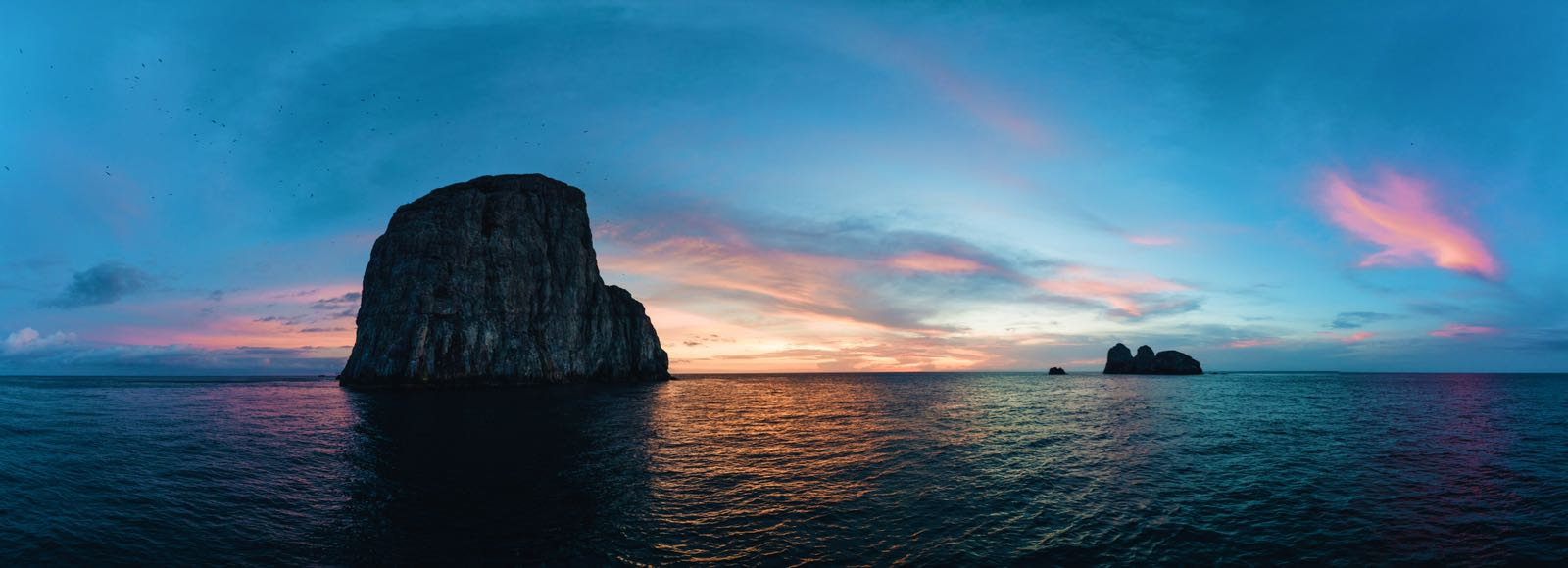 A Look at Malpelo and Azores with Pristine Seas Expedition Leader, Paul Rose - Read in English / Lee en Español