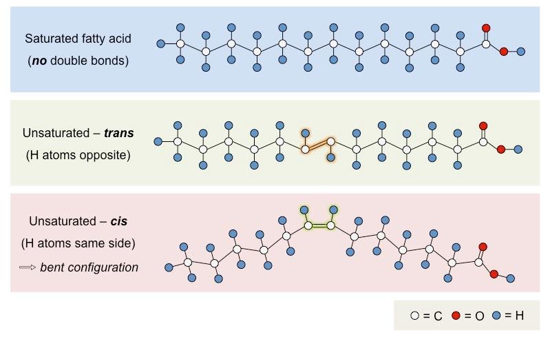 types-of-fatty-acids_med.jpeg