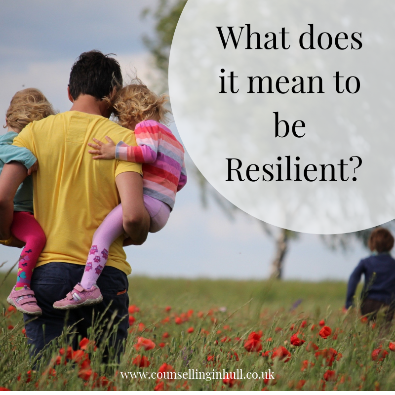 What does resilience mean?