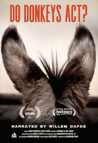 Do Donkeys Act?  Dirs. David Redmon and Ashley Sabin (documentary feature)  Design, edit, re-recording.