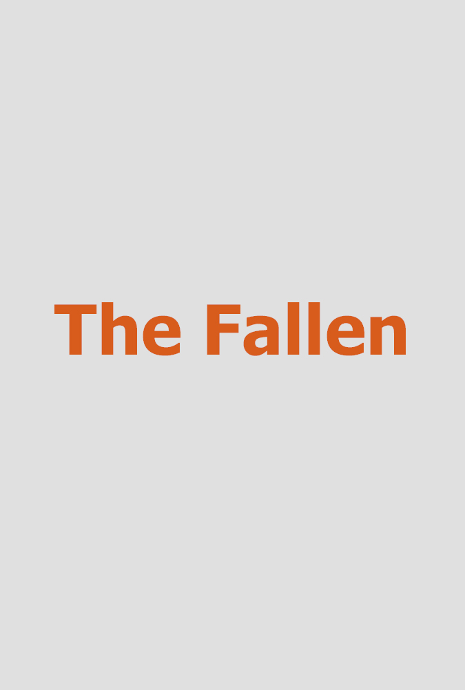 The Fallen  Make A Wish Foundation (narrative short)  Foley record