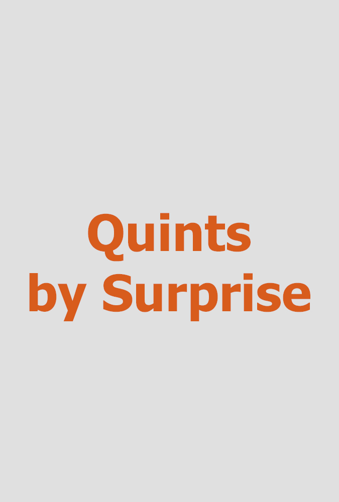 Quints By Surprise     (hour special)  Megalomediafor TLC (reality TV series)  Editing and re-recording.