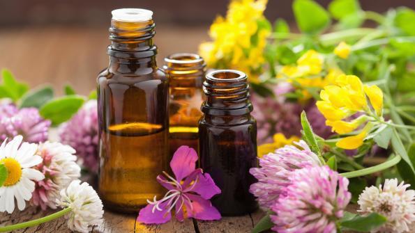mindful lifestyle oils.jpg