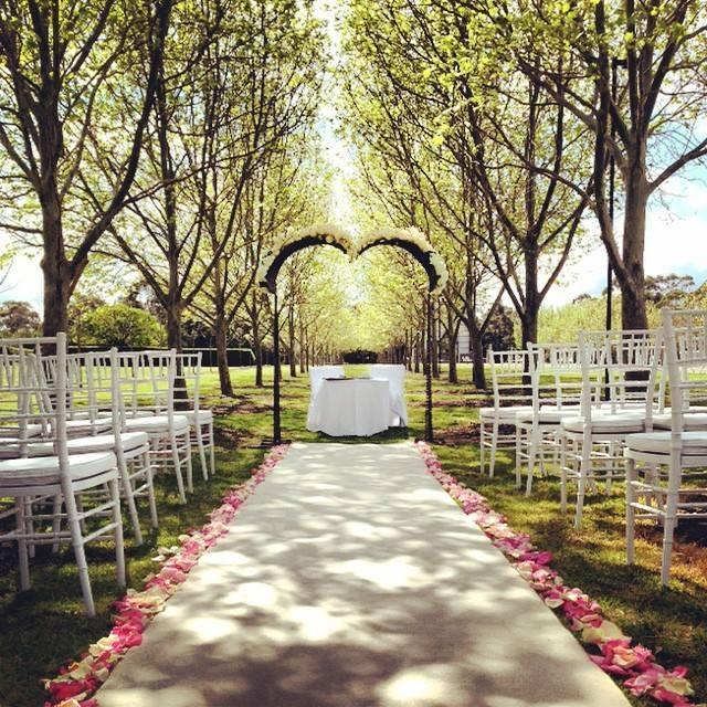 white_aisle_runner_sydney_outdoor_ceremony_centennial_park_weddings.jpg