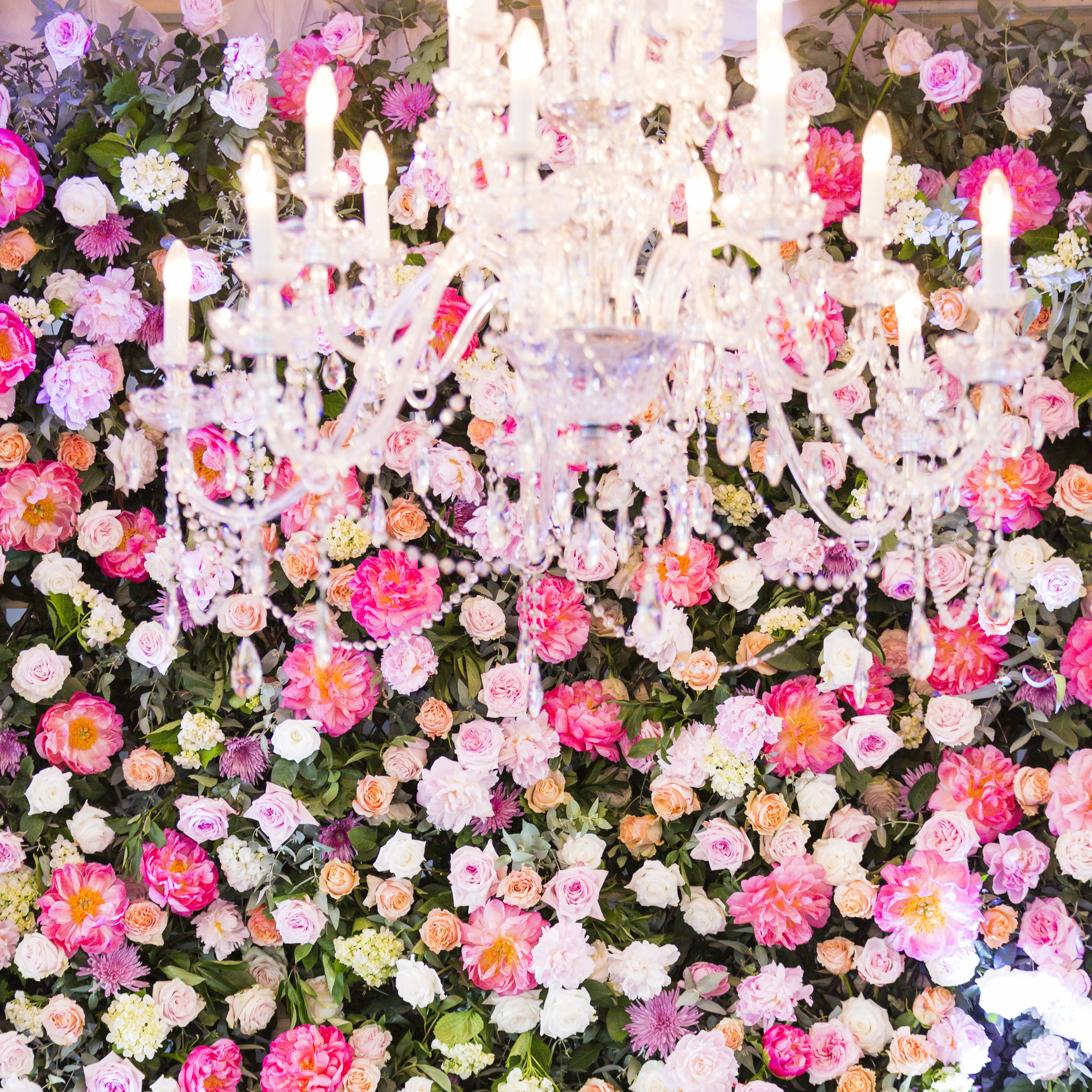 full_crystal_chandeliers_wedding_styling_event_hire_sydney_pink_wedding_flowers.jpg