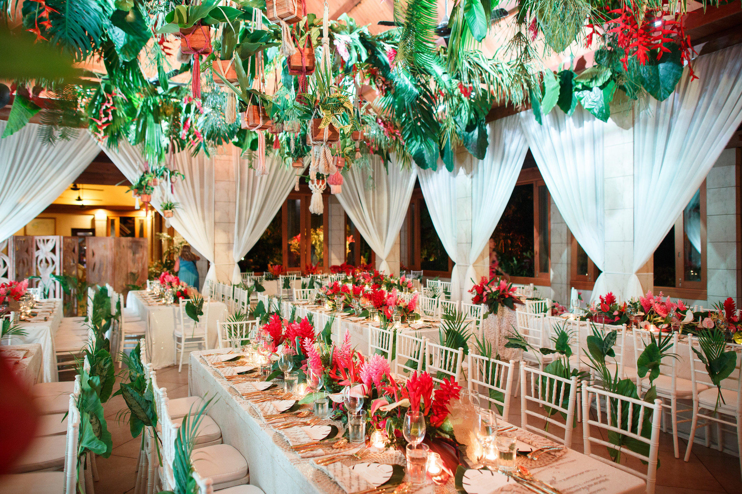 A Tropical Paradise -