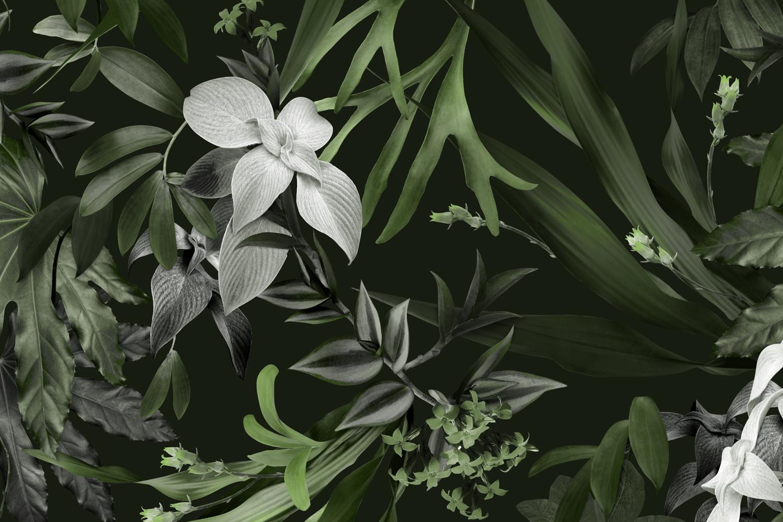 Louise Jones Tropical Khaki wallpaper