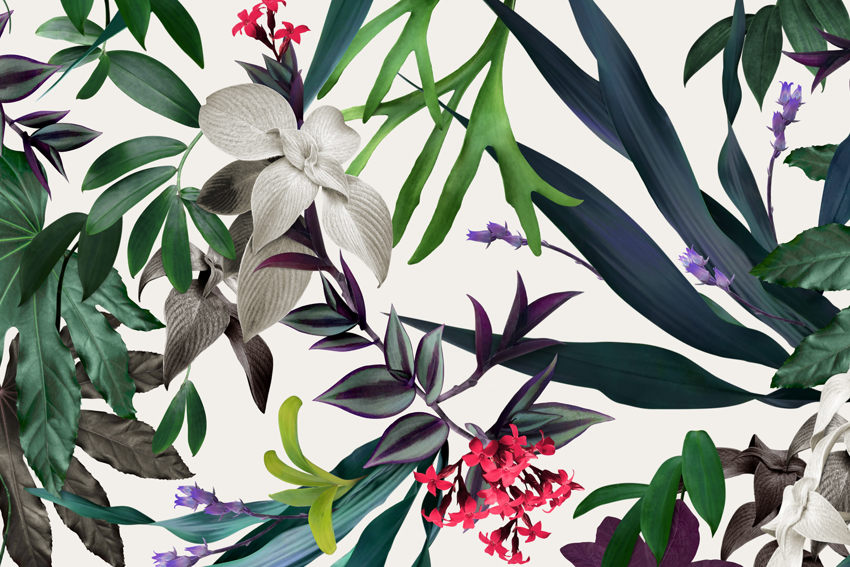 Louise Jones Tropical Green wallpaper