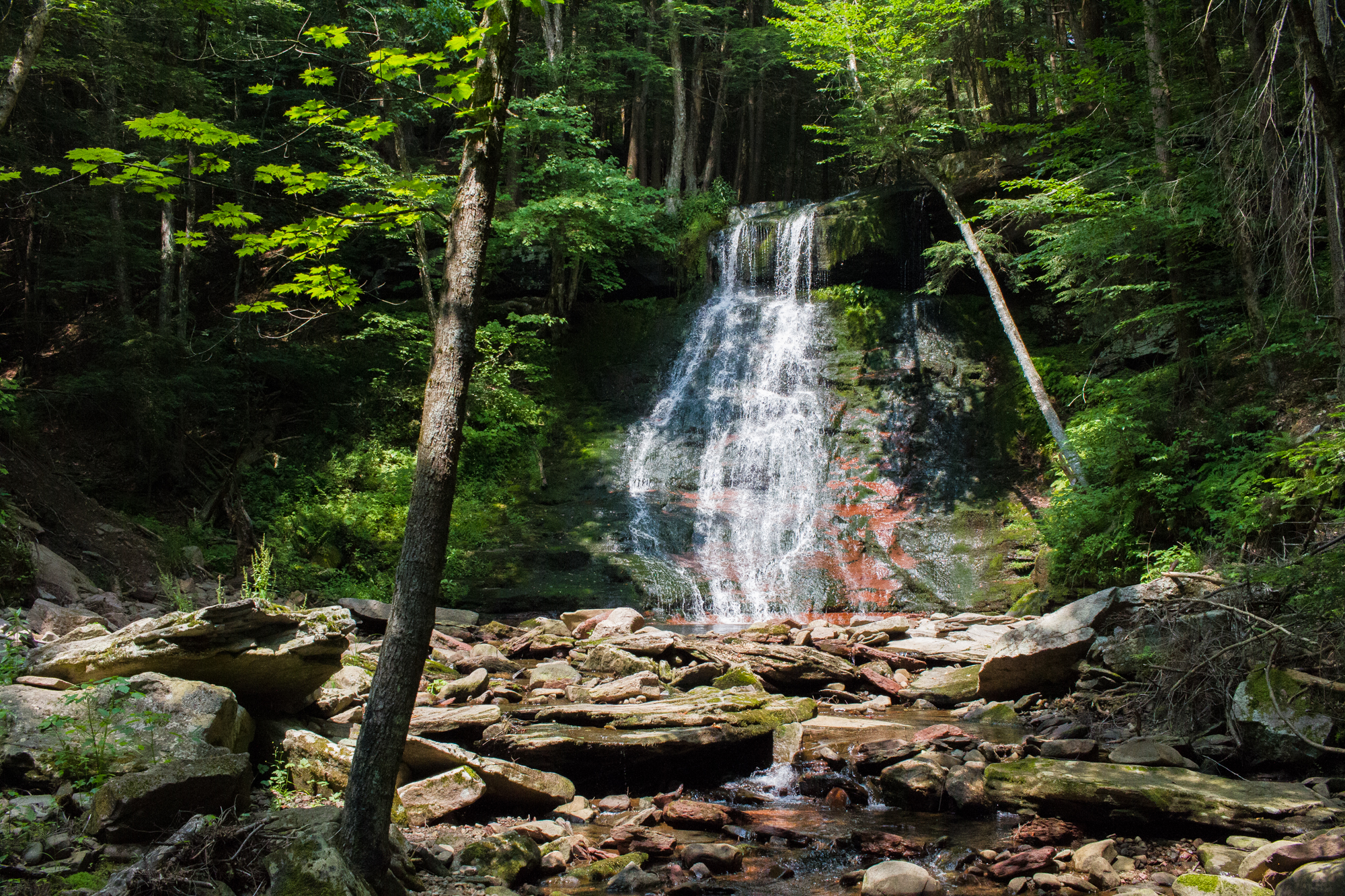 Hemlock Falls and swimming hole