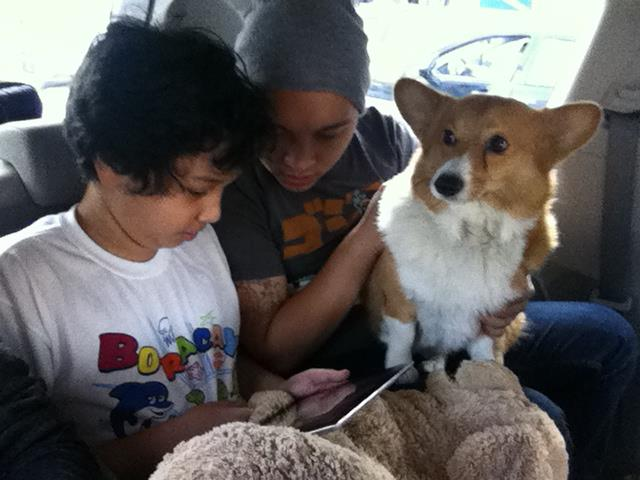 Vien sitting in the back of a van next to my cousin and the family dog on his lap on our way from NYC to Mississippi