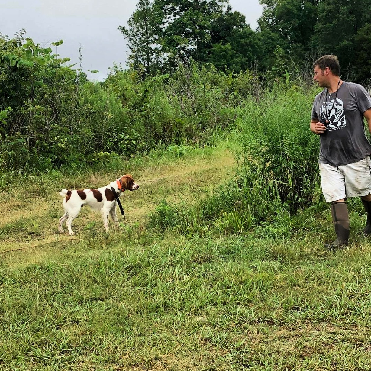 Lincoln and Grayson working on steadiness on launcher birds.