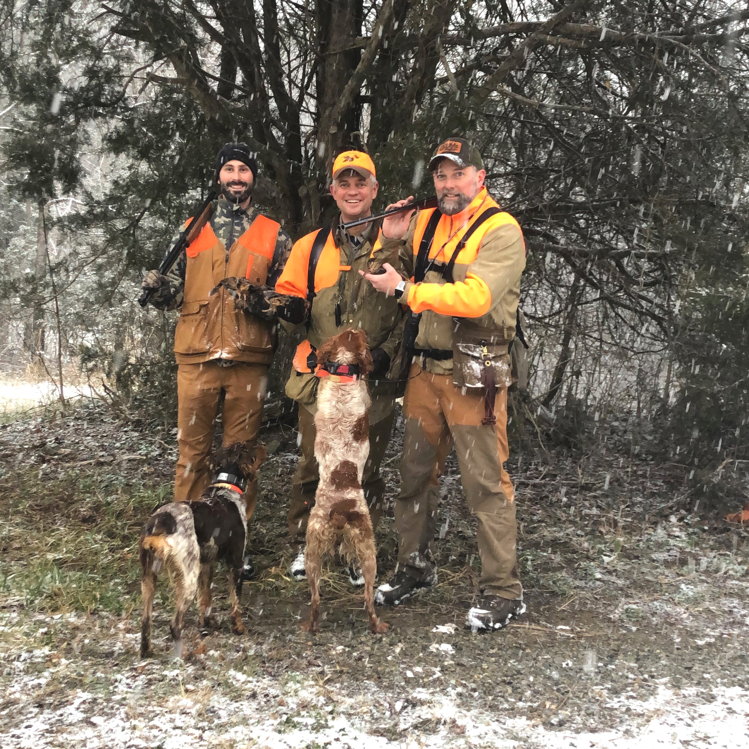 2018-2019 American woodcock season twilight creeping in on the three musketeers, Justin, Chip, and Robb, their harvest, Nova (left), and the canine star of the day, Kona (right).