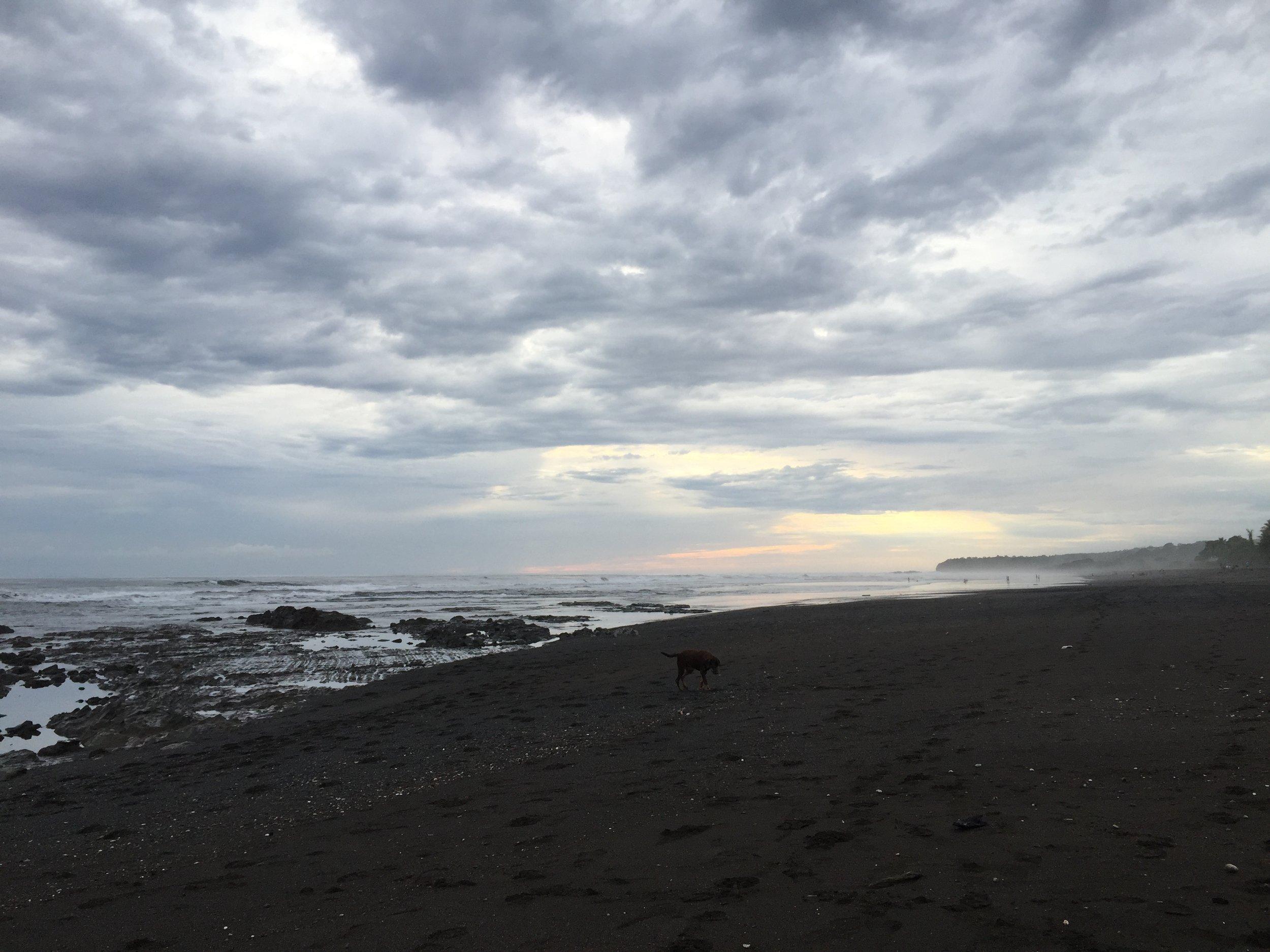 Nikka Karli Nosara Ocean.jpg