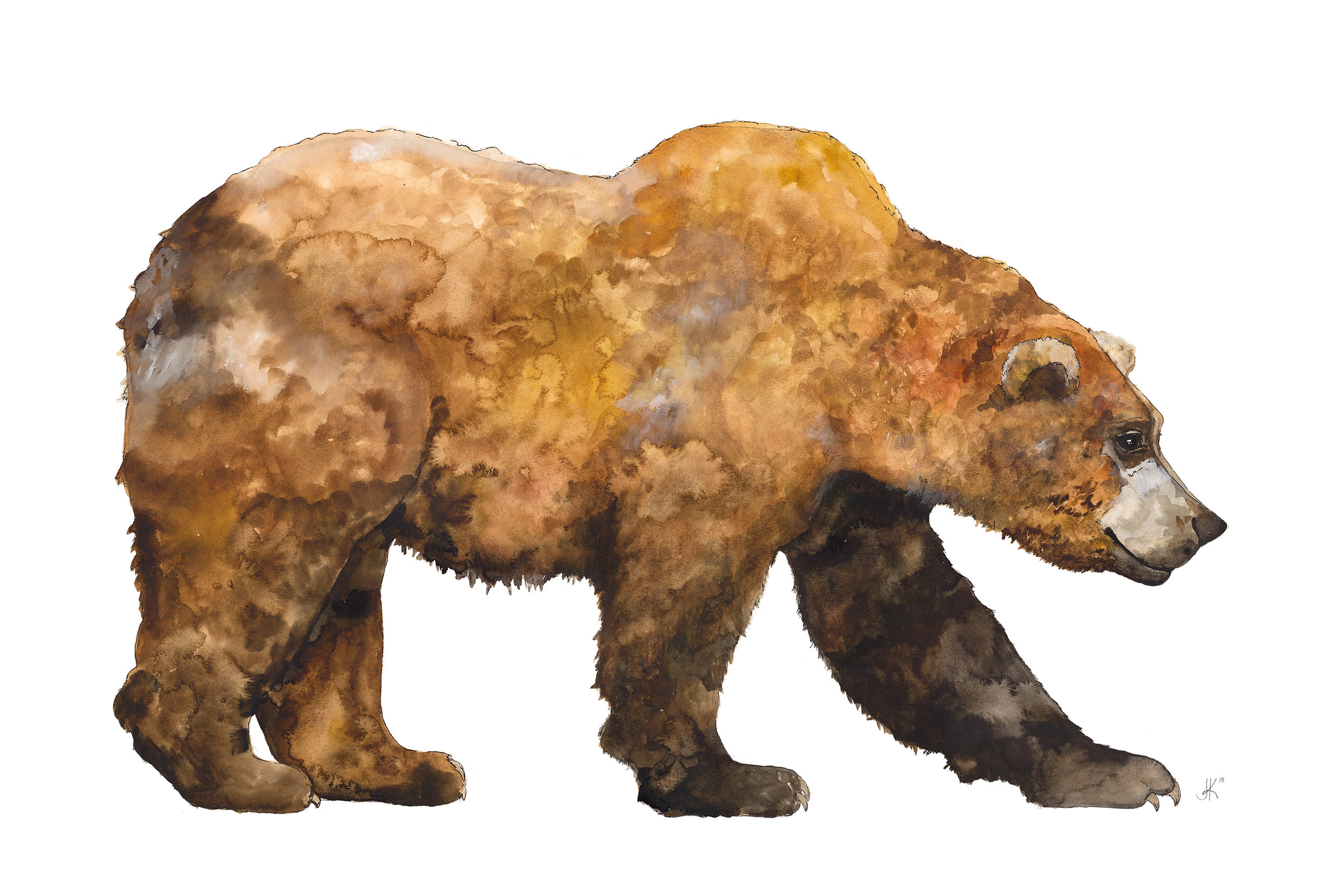 Large Grizzly.jpg
