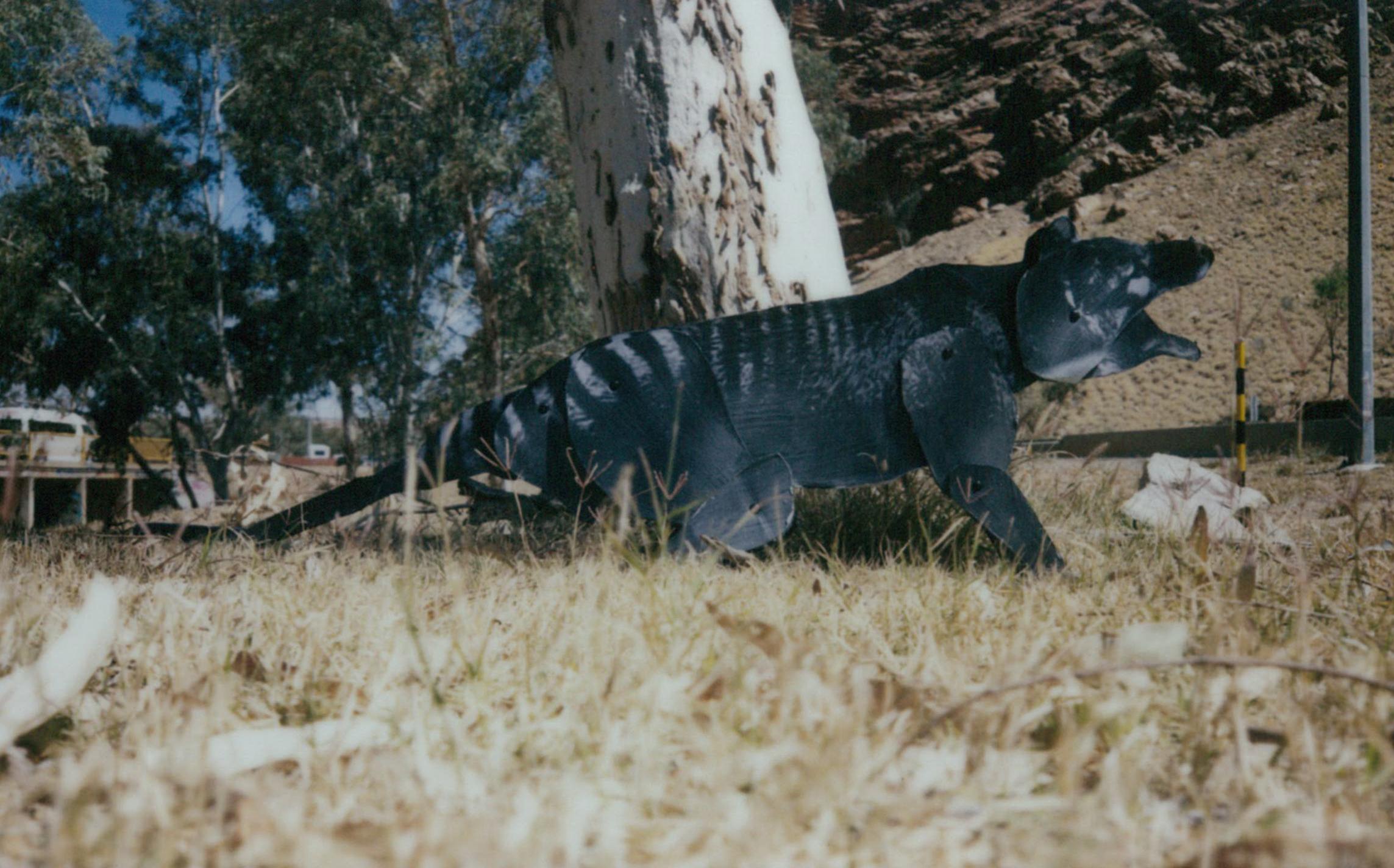 Thylacine gap 2 FB.jpg