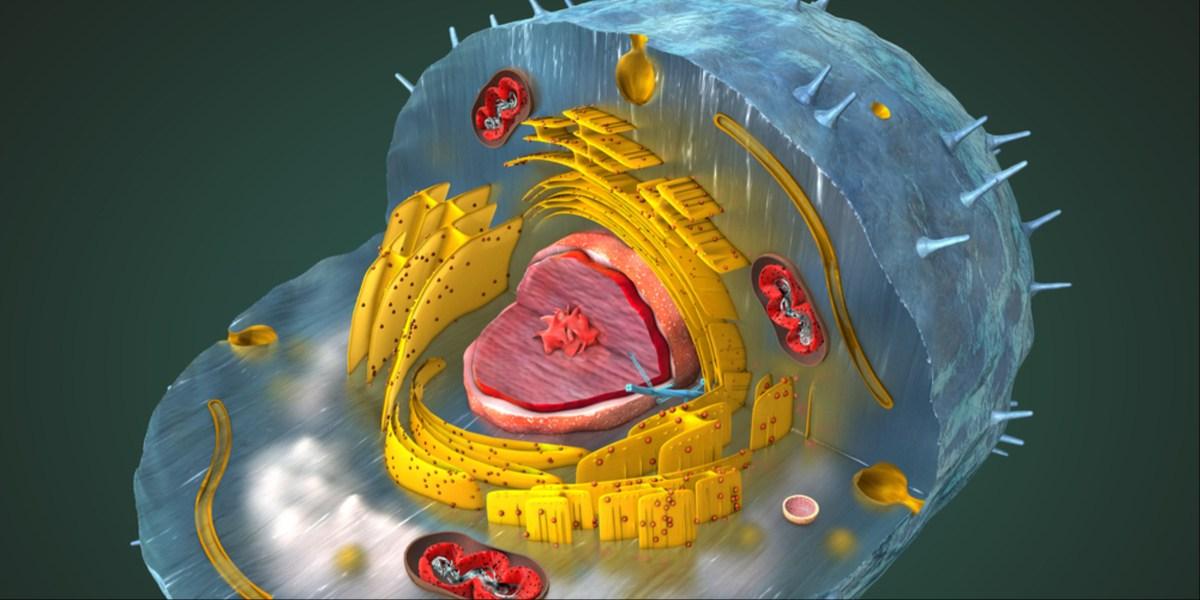 Commercializing-exosomes.jpg
