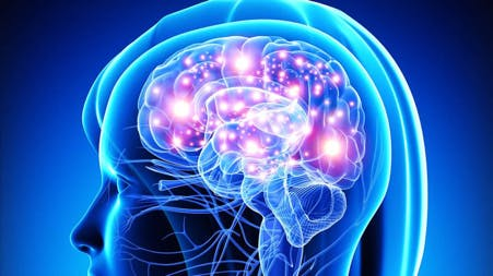 neurological (1).jpg