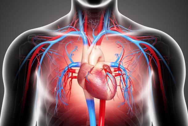 Congestive Heart Failure 心臟衰竭