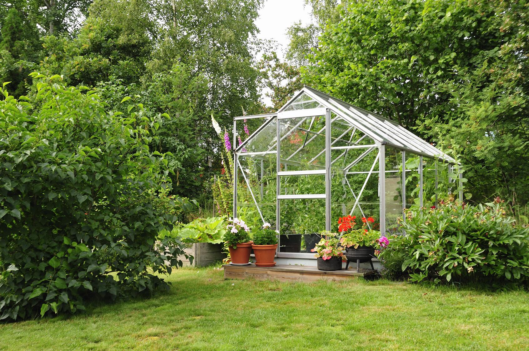 Greenhouse_67648483_M.jpg