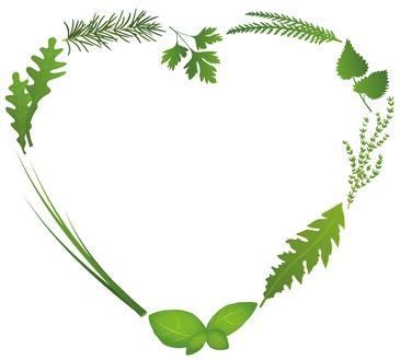 Herb heart_77143088_XS.jpg