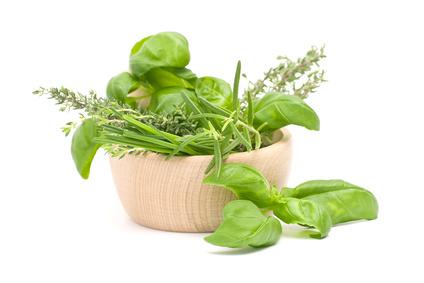 Fresh Herbs_12630055_XS.jpg