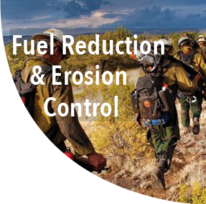 Fuel Reduction and Erosion Control.png