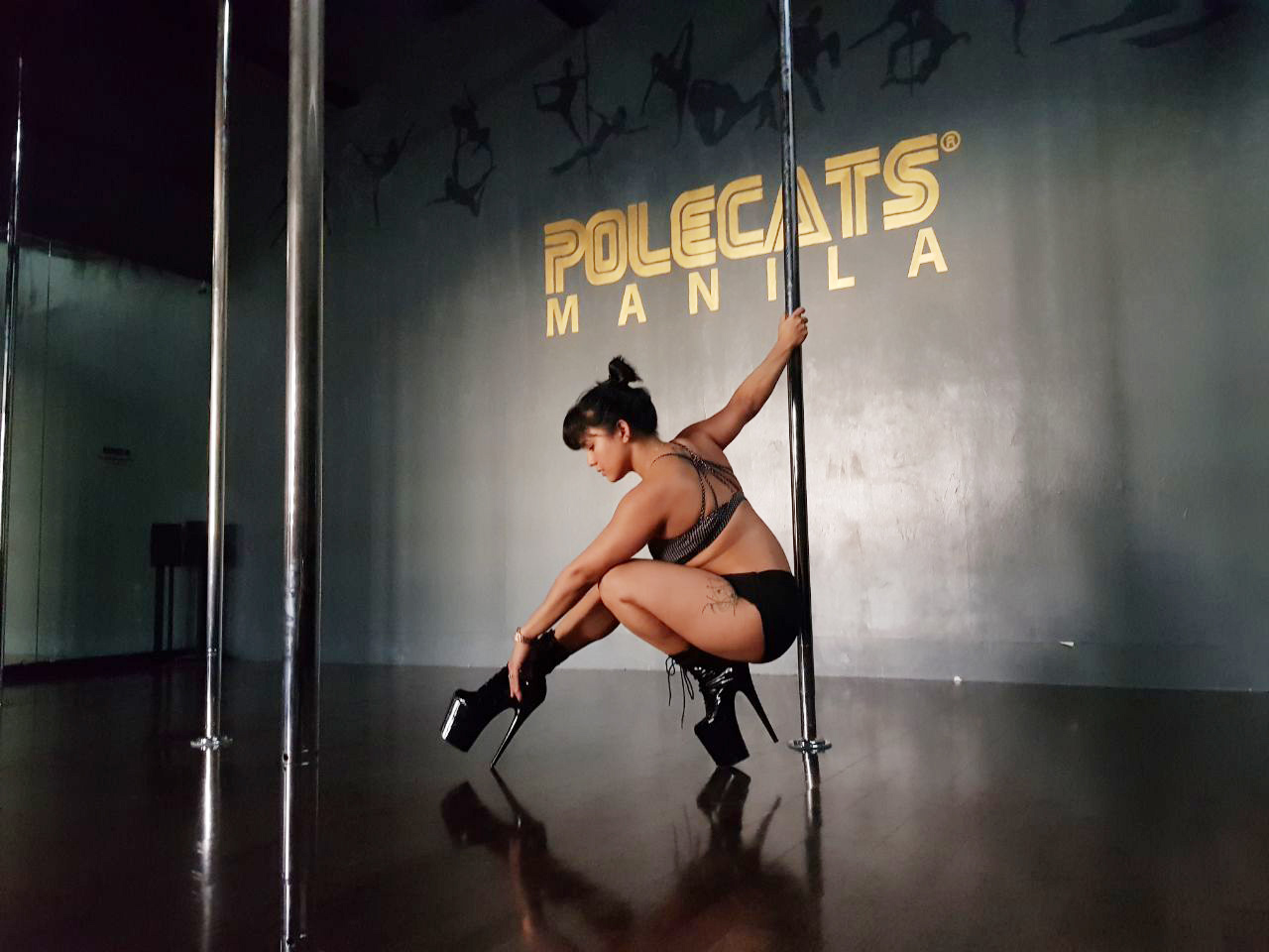 Pole Dance - Beginners welcome, but not for first timers. Become a more well-rounded pole dancer! This class will focus on choreography, with routines that will improve on your movement, coordination and confidence on the pole. Combine your flow with familiar tricks and spins, while exploring different dance styles and ways to move! Men and Women are welcome to take this class!