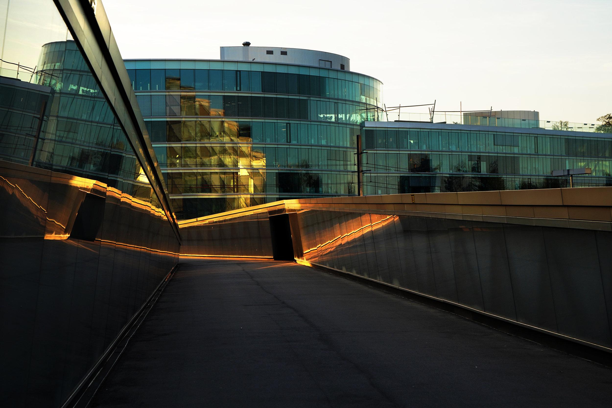 Sécheron, Genève. 2018