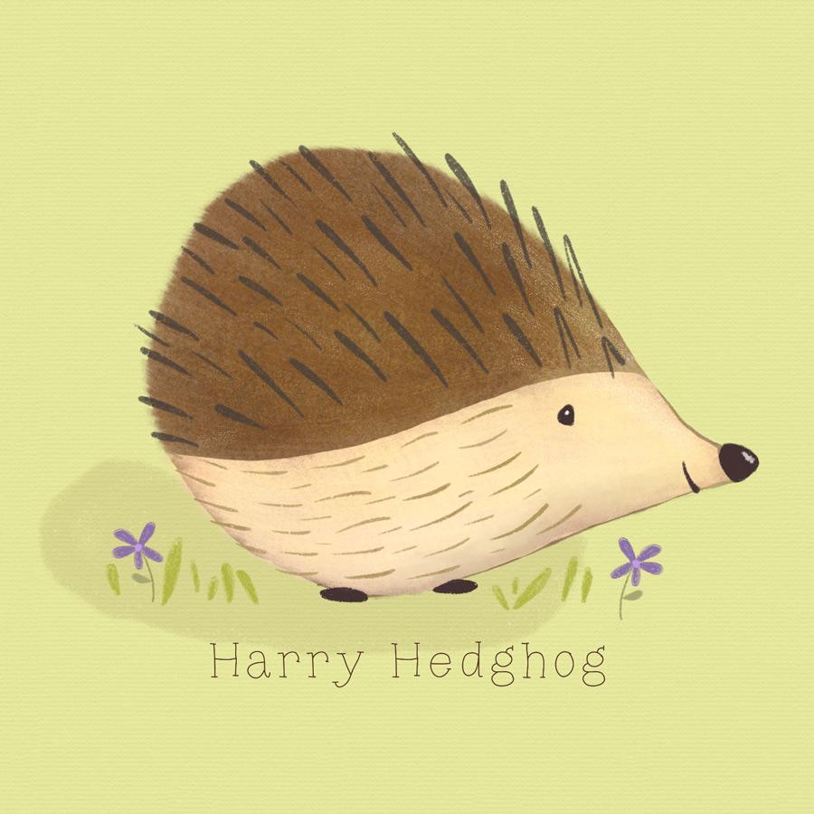 Harry-Hedgehog.jpg