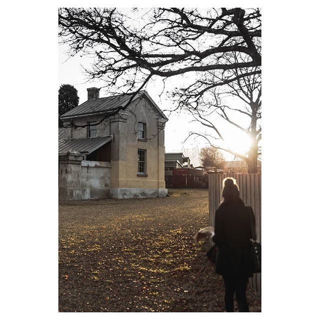Agrarian aftermath ☀️ ⠀⠀⠀⠀⠀⠀⠀⠀⠀ ⠀⠀⠀⠀⠀⠀⠀⠀⠀ ⠀⠀⠀⠀⠀⠀⠀⠀⠀ ⠀⠀⠀⠀⠀⠀⠀⠀⠀ ⠀⠀⠀⠀⠀⠀⠀⠀⠀ #naturelovers #earthoutdoors #nature #landscape_lovers #earthfocus #beautiful #naturelover #travel #folkvibe #wanderlust #landscape_captures #explore #instagood #landscapelover #instanature #nature_seekers  #natgeofineart #picoftheday #ic_landscapes #justgoshoot #scenery #lr_moments #travelgram #awakethesoul #helloworldwin #canonaustralia #explorehobart #discovertasmania #tasmania #agrariankitchen