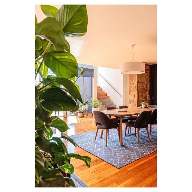 Planted interior + timber & stone 👌🏼 Architect: @pleysierperkins Builder: @visioneerbuilders ⠀⠀⠀⠀⠀⠀⠀⠀⠀ ⠀⠀ ⠀⠀⠀⠀⠀⠀⠀⠀⠀ ⠀⠀ ⠀⠀⠀⠀⠀⠀⠀⠀⠀ ⠀⠀ ⠀⠀⠀⠀⠀⠀⠀⠀⠀ ⠀⠀ #canonaustralia #architecturemelbourne #interiordesignmelbourne #archdaily #lr_moments #ozshotmag #takemetoaustralia #seeaustralia #interiordesign #discoveraustralia #letsgosomewhere #exploreaustralia #australiagram #architecturephotography #liveauthentic #explorecreate #creativelife #wanderlust #roamtheplanet #interiordesigncollective  #wildernessculture #planted #instagood  #productphotography #productphotographymelbourne #commercialphotographymelbourne