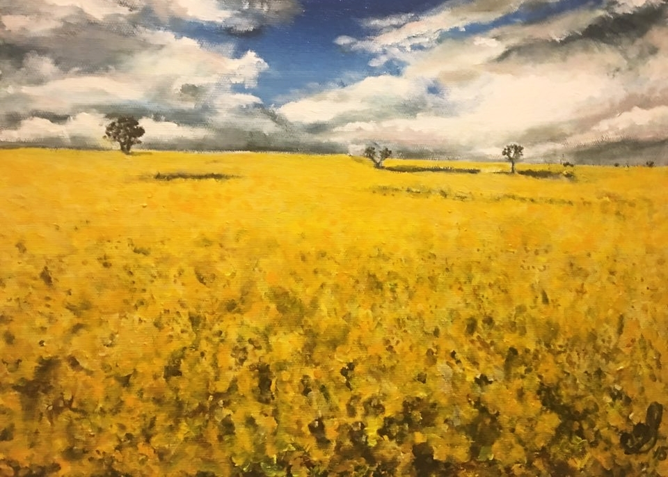 Yellow field  by Stella Lee Acrylic on canvas