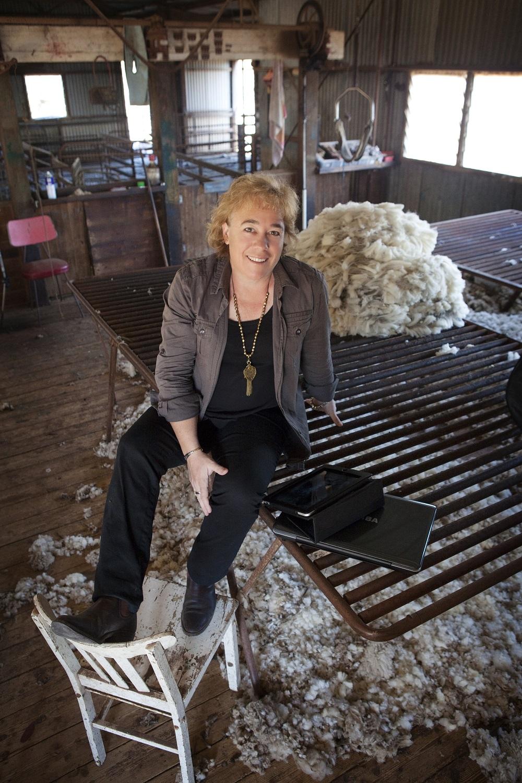 Linda-Eldredge-shearing-shed (1).jpg