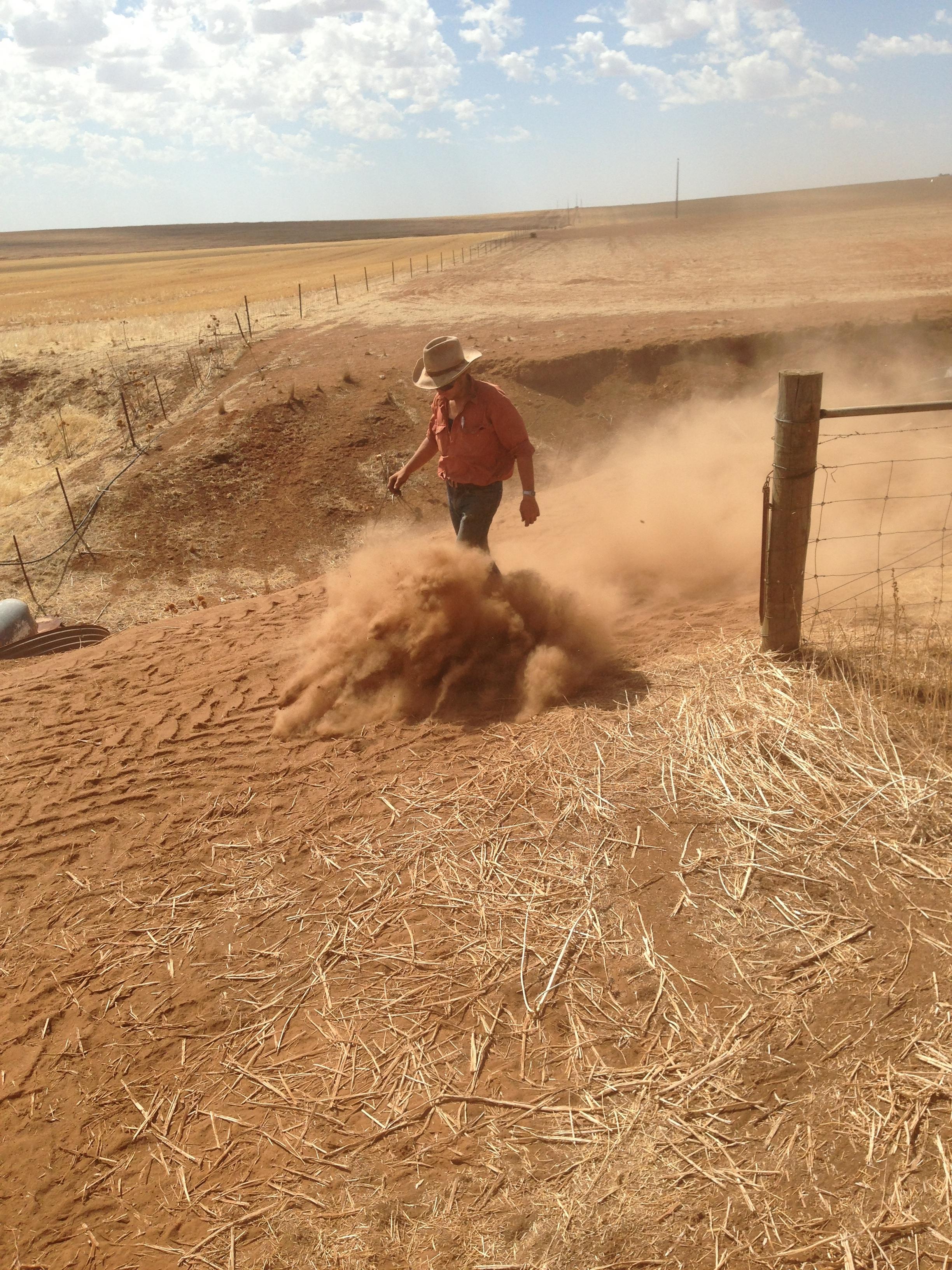 Bull-Dust-Clare-South-Australia