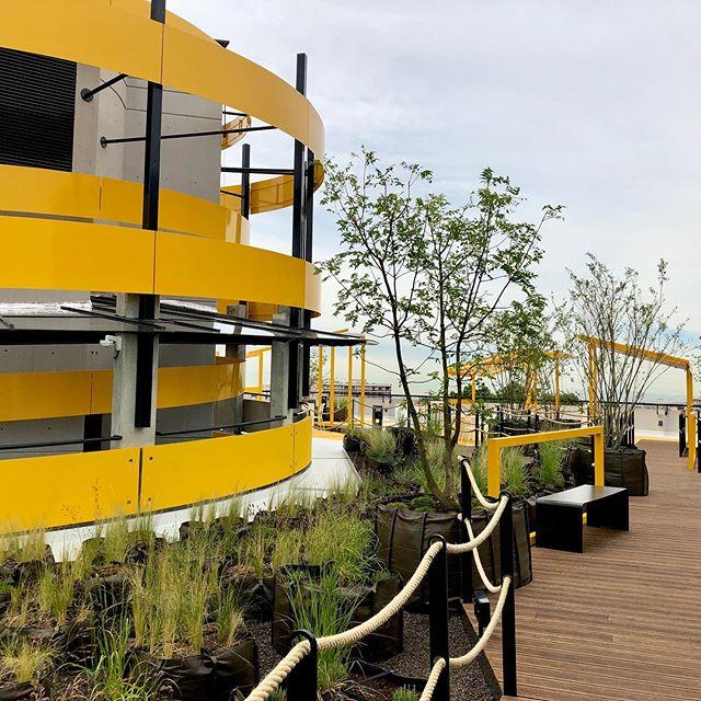 Ouverture officielle aujourd'hui du jardin suspendu au Parc @LPA_officiel des Halles. Un projet par l'architecte @williamwilmotte : un espace vivant avec un vrai jardin (2200 âmes végétales) conçu par la paysagiste Anne Laure Giroud et une architecture Ying & Yang créée par l'artiste @mengzhi avec des sculptures et installations dans un mouvement hélicoïdal. Prenez l'ascenseur, montez au 7ème étage et découvrez le Rooftoop. Limité à 100 personnes. 8H30 à 22H00. Restauration et buvette par @fruisy 😊🌱On a profité d'un petit cours de Yoga matinal 🧘🏻♀️ . . #lyon #lyonnaise #monlyon #igerslyon #lyoncity #lyonfrance #move2art #lpa #lyonparcauto #urbanisme #partdieu #lyon3 #hallespaulbocuse #hallesdelyon #mengzi #architecture #paysagiste #architecte #plantes #toitvegetal #rooftop #mengzhizheng @millelyons