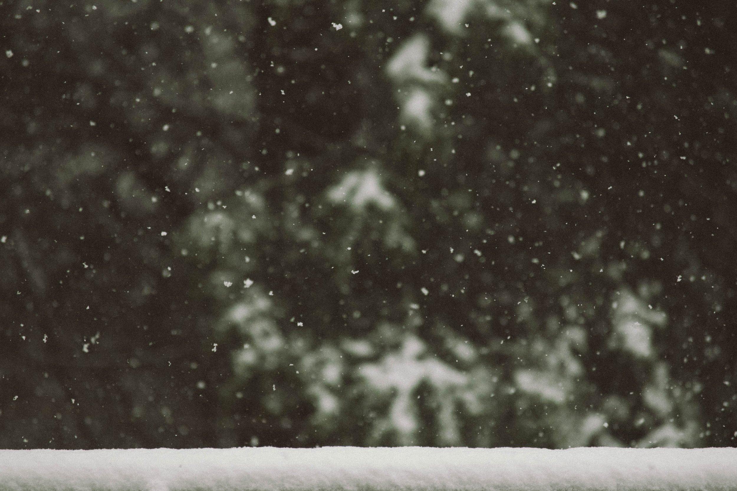 Snö & Vinter ⎯  Läs mer